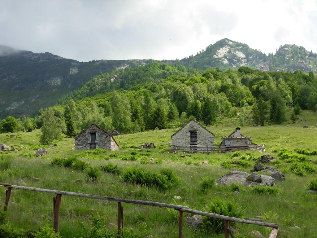 Alpe Parpinasca